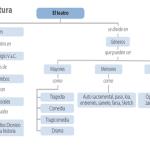 Cuadros sinópticos sobre el Teatro Literario y sus divisiones
