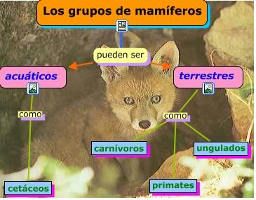 mamiferos.cmap