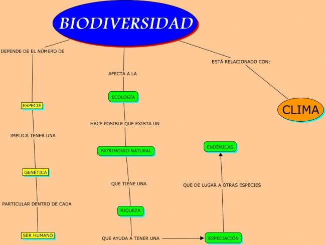 mapa conceptual biodiversidad.cmap