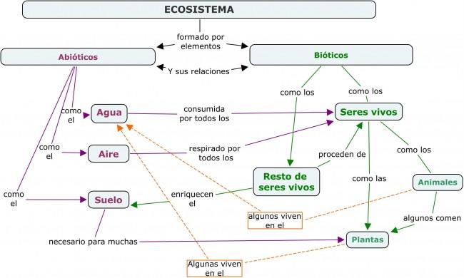 mapa ecosistema1