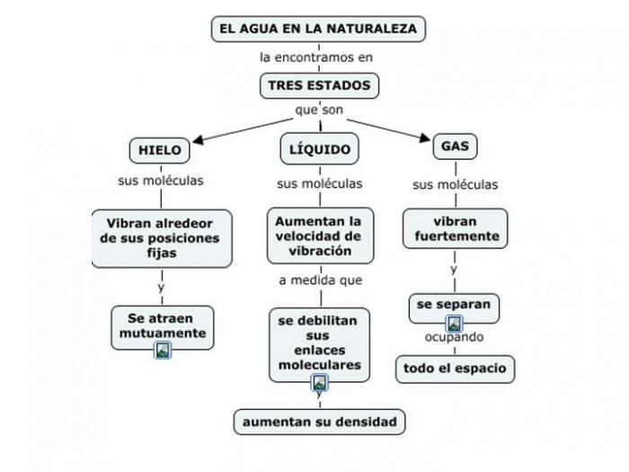 leyes de la termodinamica ecologia pdf