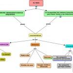 Cuadros sinópticos y mapas mentales sobre el Sida o VIH