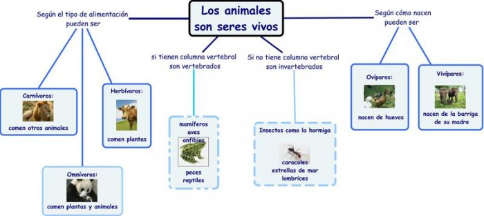 Los_animales_1_-_MC