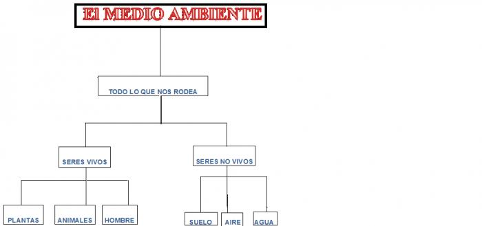 MAPA+MEDIO+AMBIENTE2