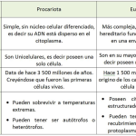 Cuadros comparativos entre Células Procariotas y Eucariotas