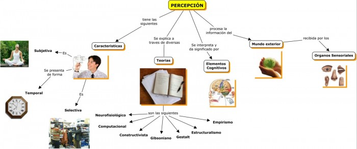 PERCEPCION-