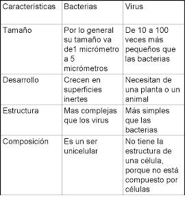 TAREA1.bmp