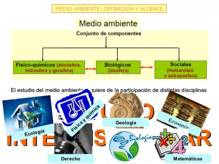 concepto-de-medio-ambiente-y-dinmica-de-sistemas-2012-4-728