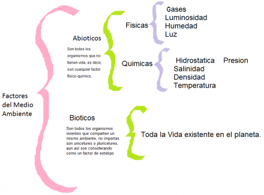 factores-medio-ambiente-e1414609466849