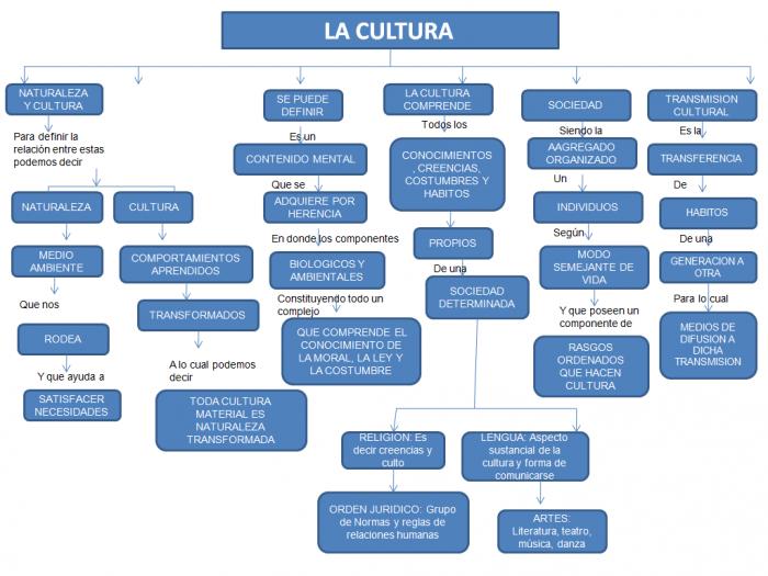 mapaconceptualcultura