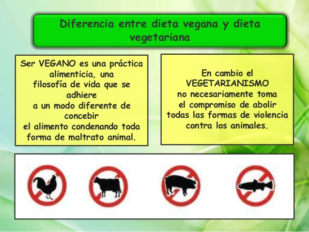 veganopower-vegetariano-2013-8-638