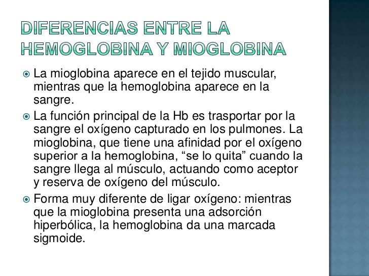 hemoglobina-y-mioglobina-estructura-caractersticas-semejanzas-y-diferencias-7-728