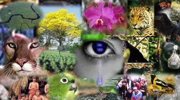 Biodiversidad en el Banco de la Republica Bga