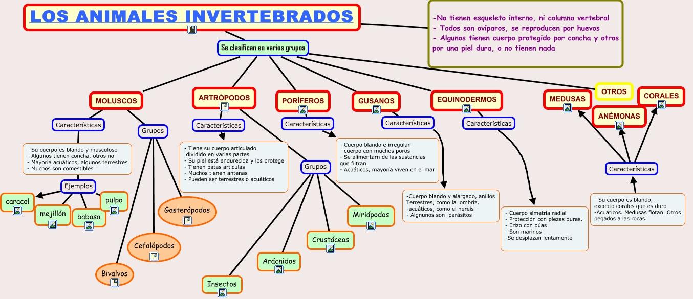 INVERTEBRADOS.cmap
