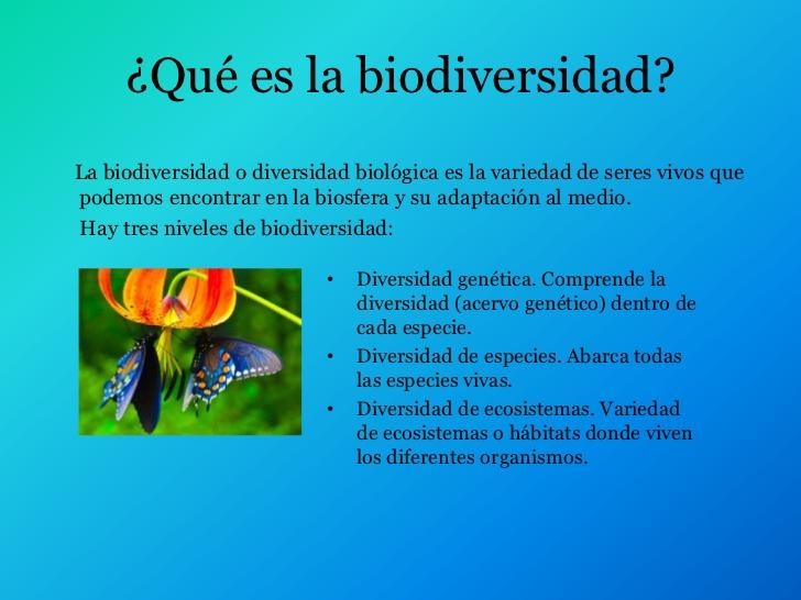biodiversidad-2-728