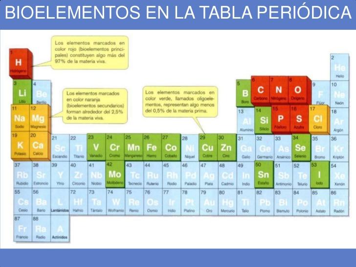 bioelementos-y-biomoleculas-3-728