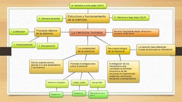 memoexposicin-05-signos-y-sntomas-de-alteraciones-de-la-memoria-5-638