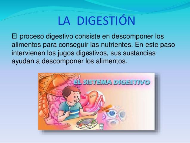 digestivo-laura-helena-4-638