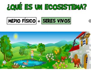 ecosistemaCaptura de pantalla 2011-06-06 a las 00.31.07