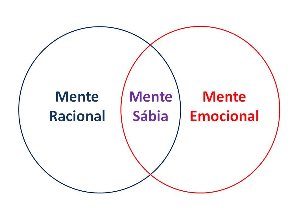 racional_emocional_sc3a1bia2