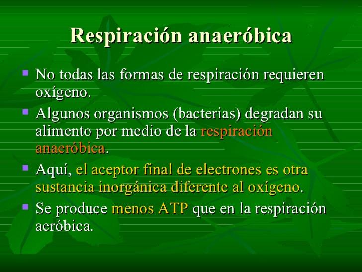 respiracion-y-fermentacion-12-728