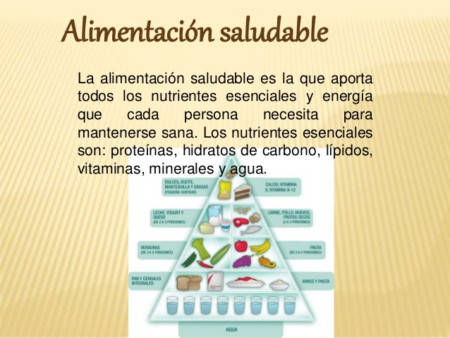 chataomida-chatarra-vs-alimentacin-saludable-ppt-4-638