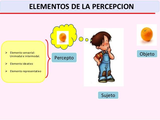 04-sensacion-percepcion-castilla-13-638
