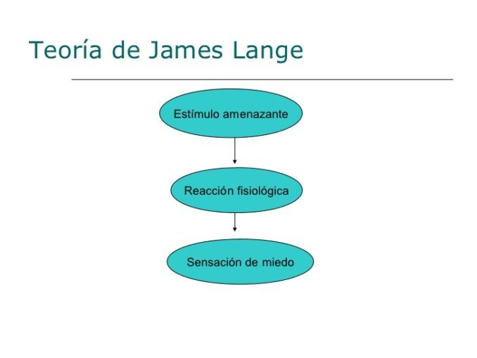 neuro-emociones-diapositivas-vale-presentamos-tp-5-728
