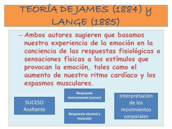 neuropsicologia-de-las-emociones-2-4-728