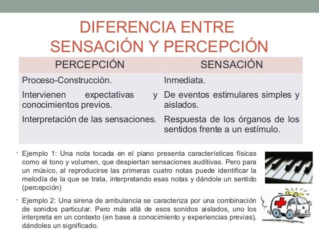 sensacin-y-percepcin-12-638