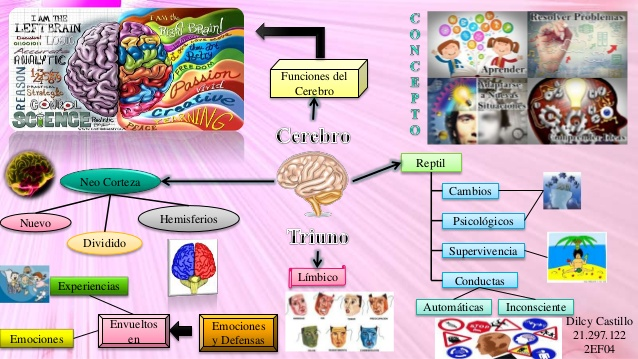 mapa-mental-del-cerebro-1-638