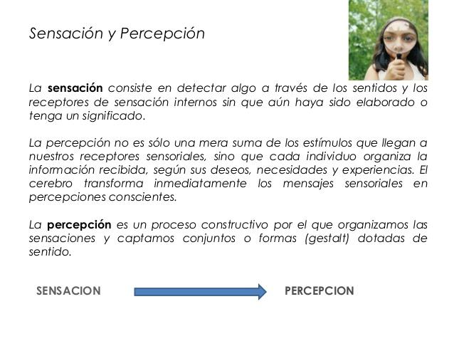 1-procesos-psicologicos-basicos-sensacion-y-percepcion-4-638