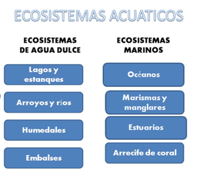 Cuadros comparativos entre ecosistemas terrestres y