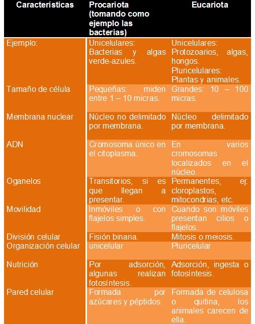Tipos de microbiologia