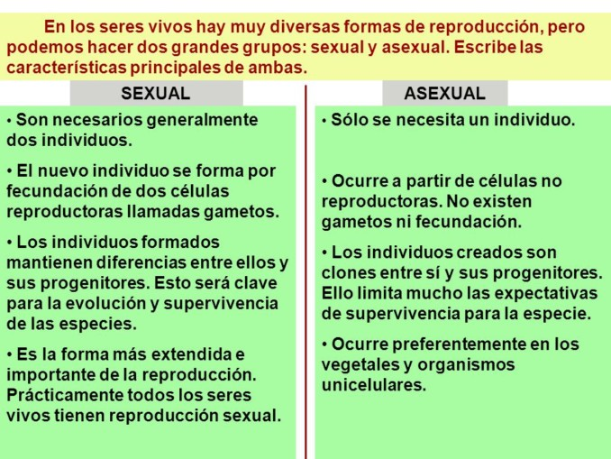Reproduccion sexual y asexual de las bacterias
