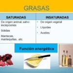 Cuadros comparativos sobre Grasas Saturadas y Grasas Insaturadas: Información