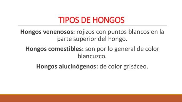 Cuadros comparativos y sin pticos entre hongos comestibles - Tipos de hongos en la pared ...