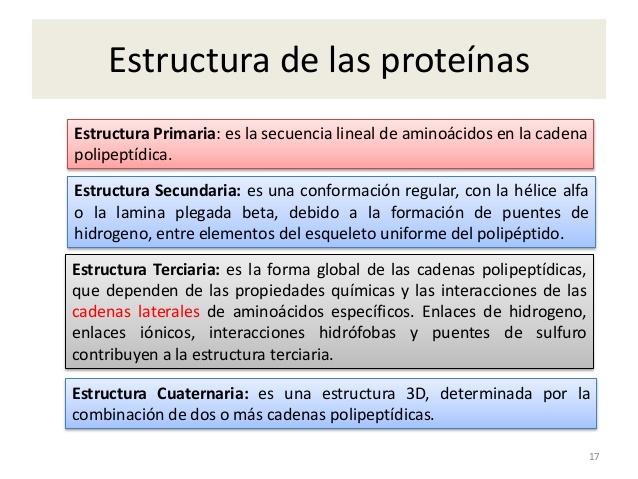 proteinas conjugadas ejemplos en alimentos
