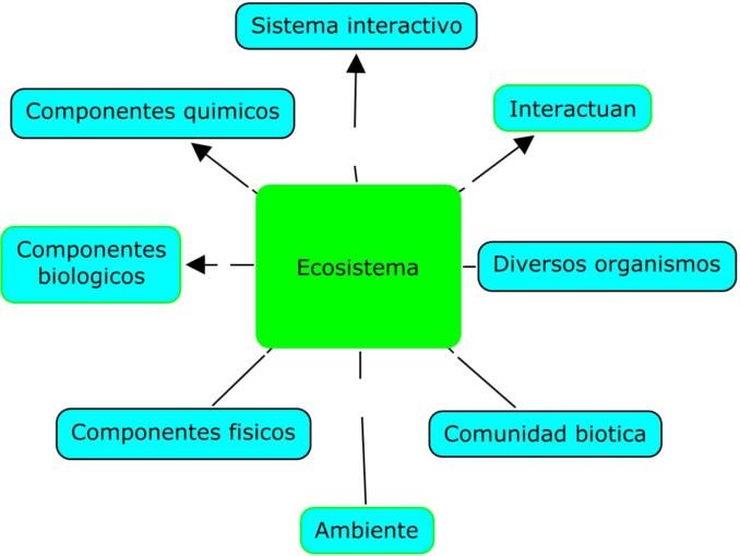 Ecología Cuadros Sinópticos E Imágenes Cuadro Comparativo