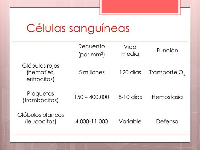 parametros normales de globulos blancos y rojos