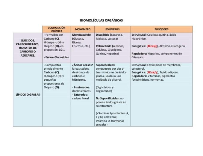 La Dieta Mediterránea En El Siglo XXI  Blog Del Grupo Cajamar