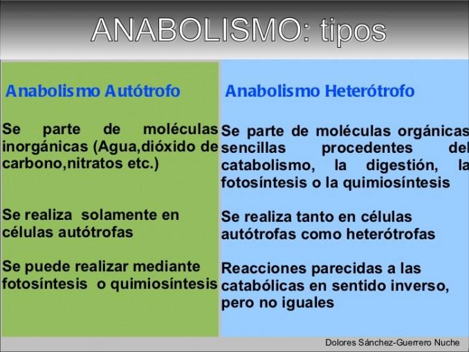 Se trata de la Ibuprofeno metabolismo